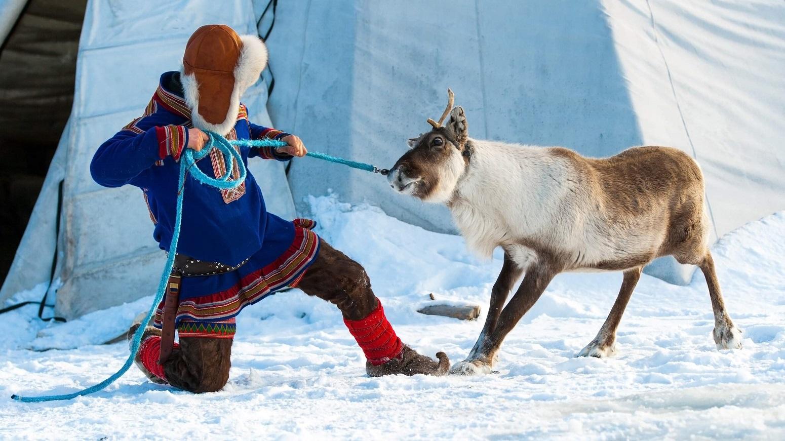 pueblo sami laponia