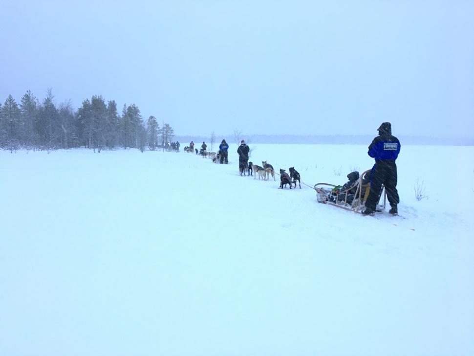 Ana B Arctic Circle Fin de Ano 2016