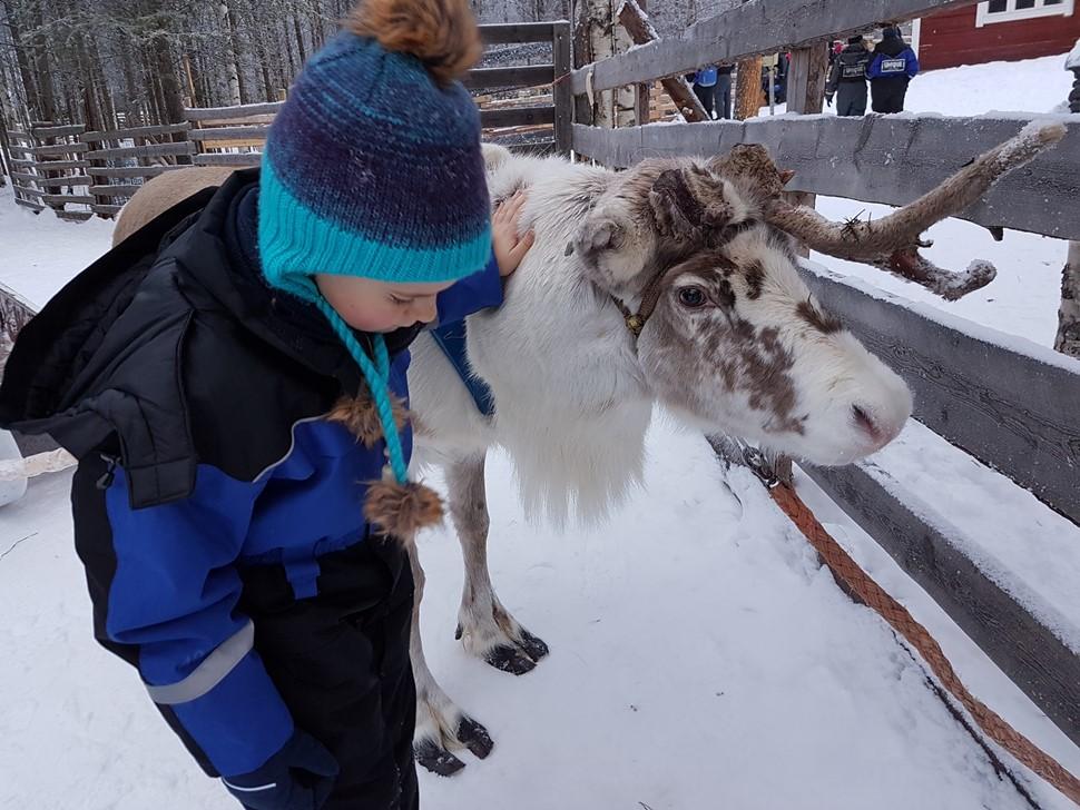 Anabel D Arctic Fin de Ano 2016 01