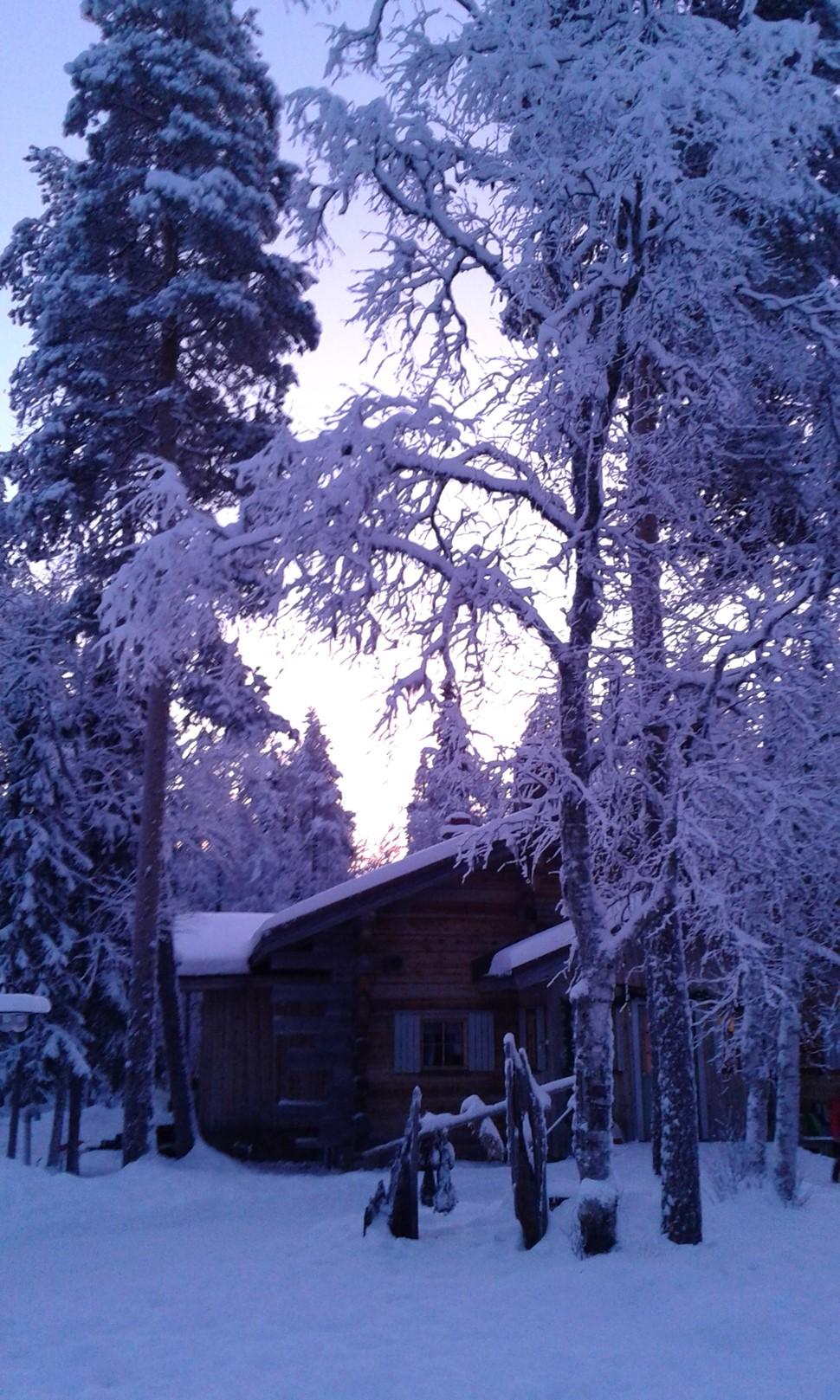 Cristina R Navidad Arctic 2016