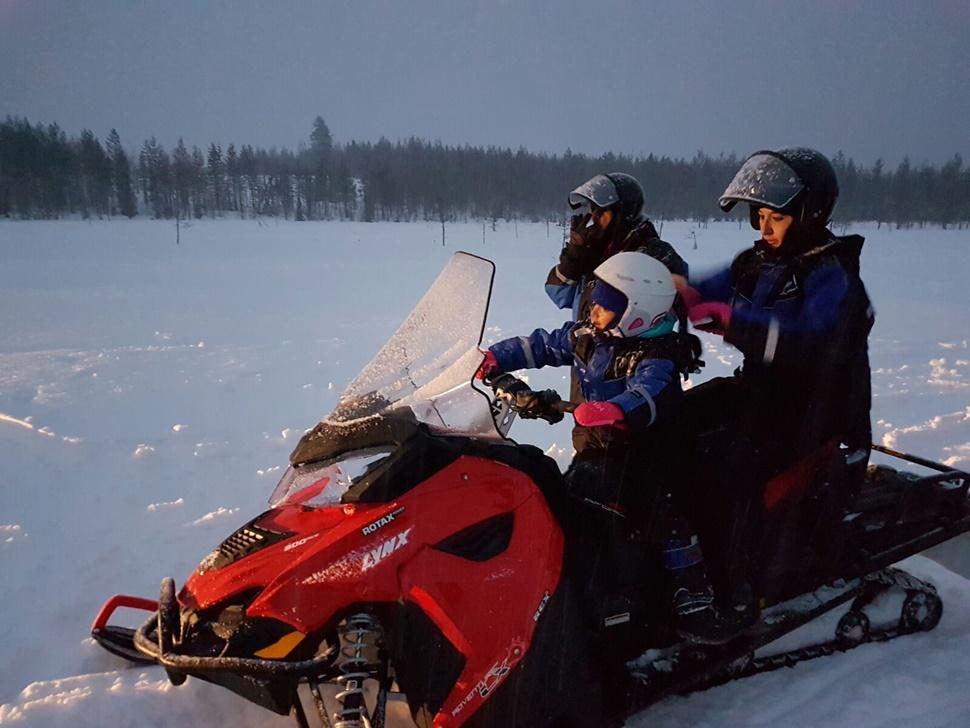 Familia Buendia Cardenal Arctic Fin de Ano 2016