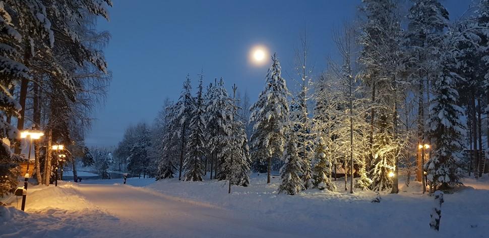 Familia De la Fuente Navidad 2018 Arctic Circle Wilderness 2