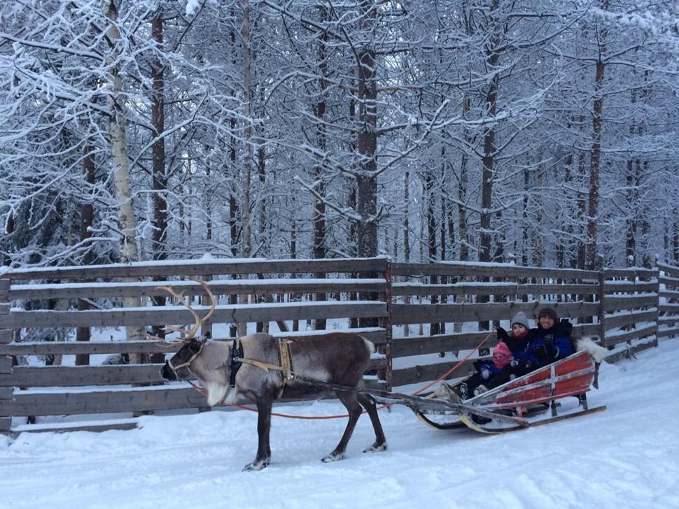 Gemma B Navidad Arctic 2016