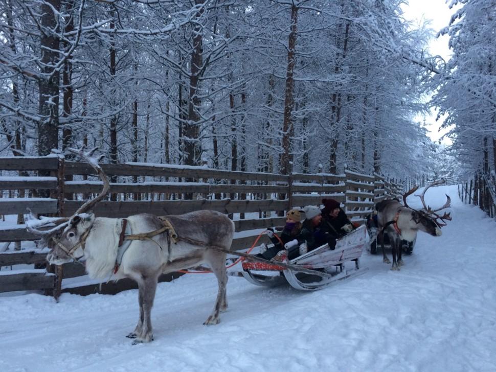 Imma A Navidad Arctic 2016