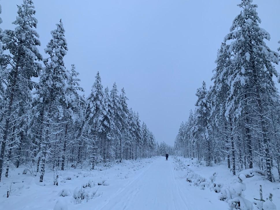 Isabel Abellan Nochevieja 2018 Arctic Circle Wilderness