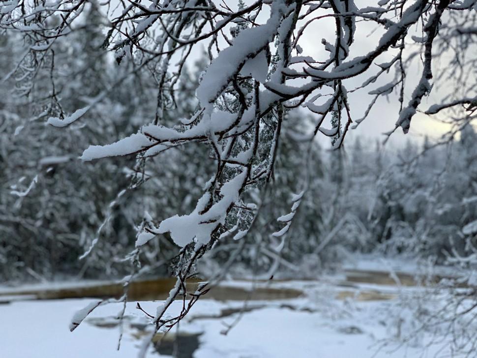 Isabel Abellan Nochevieja 2018 Arctic Circle Wilderness 01