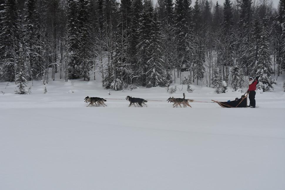 Jose Maria G Kuusamo Helsinki Tallin Fin de Ano 2016