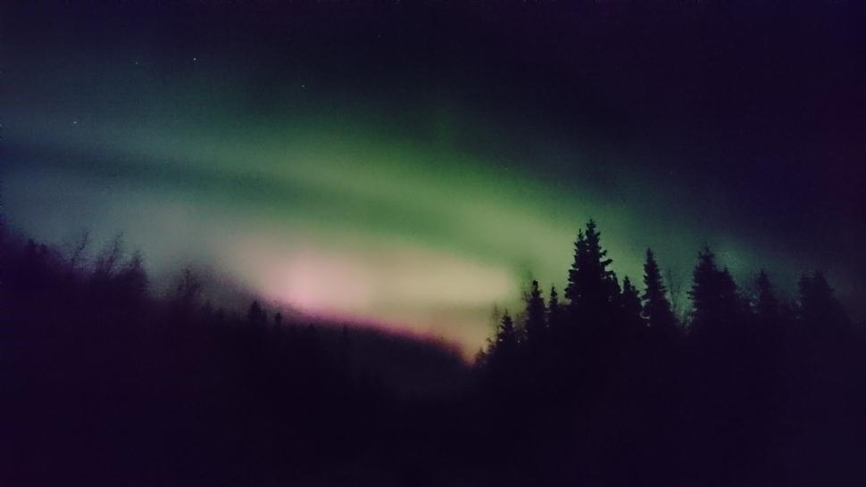 Laura G Navidad Arctic 2016 01