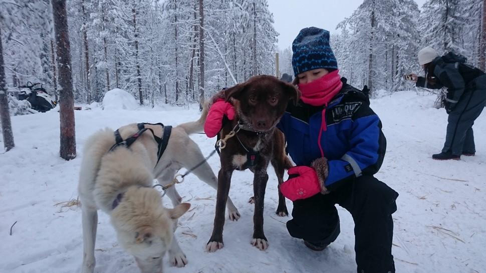 Laura G Navidad Arctic 2016