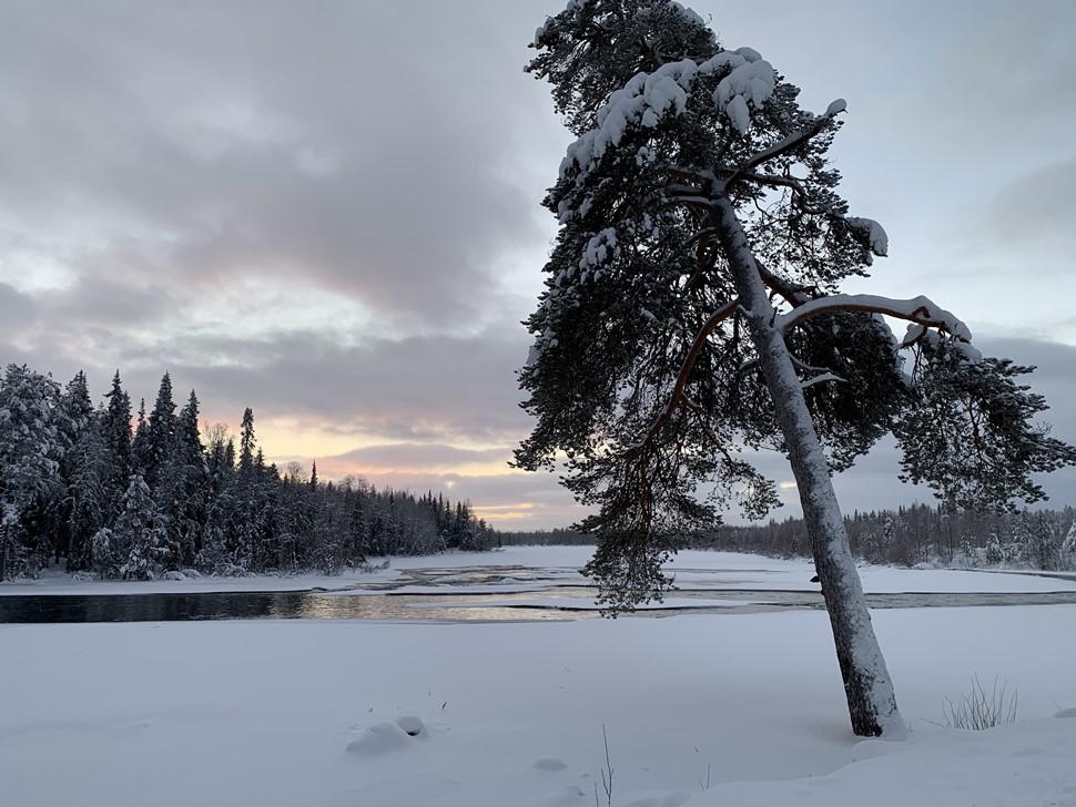 Maite V Reyes Arctic Circle 2019 2