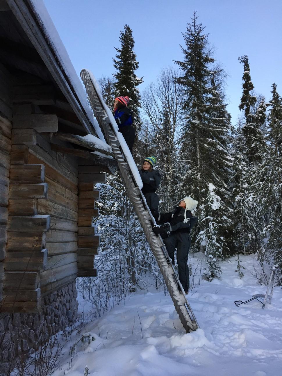 Mayte D Arctic Fin de Ano 2016
