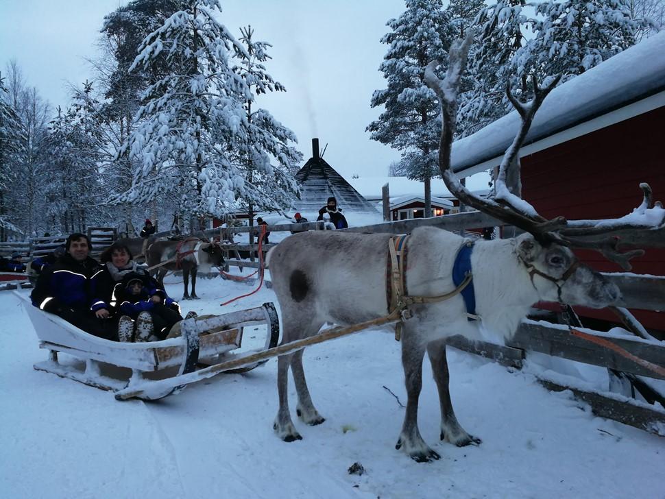 Montse R Nochevieja Arctic 2017