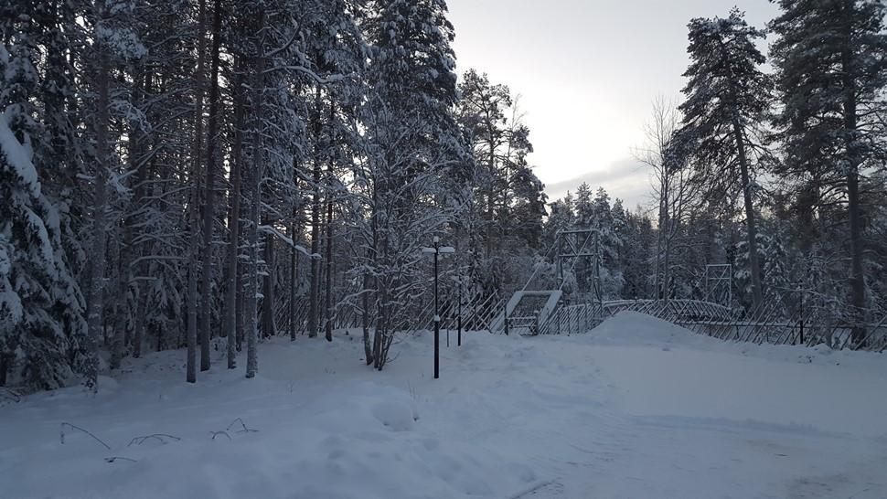 Pilar C Diciembre Arctic 2016 01