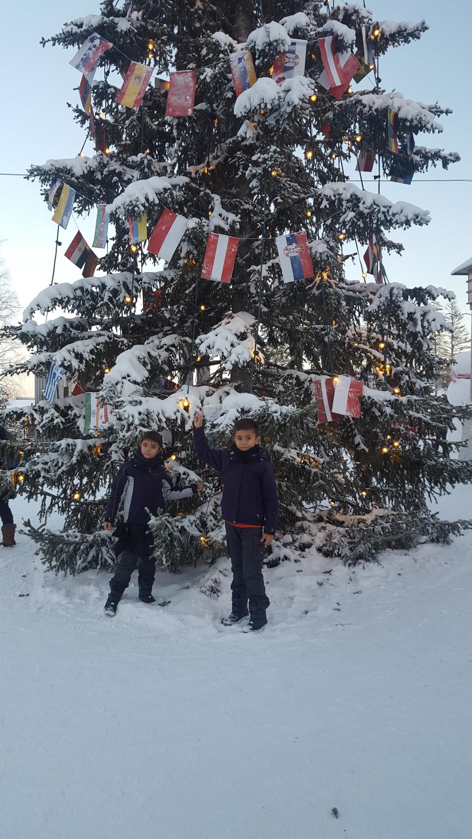 Pilar C Diciembre Arctic 2016
