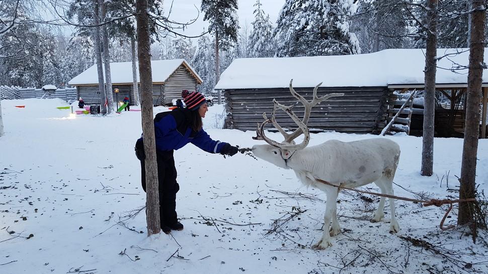 Veronica Palomares Arctic Circle Reyes 2
