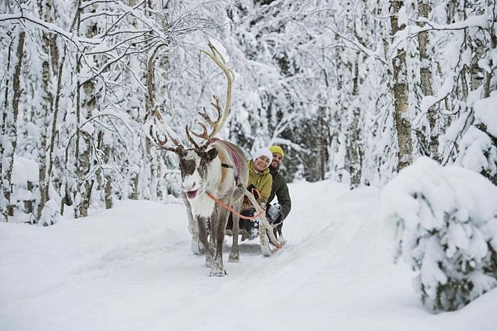 aventura arctic viajes a laponia