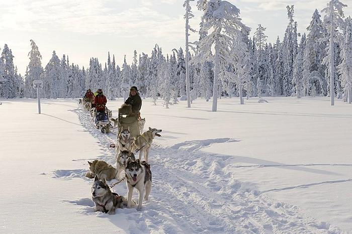 aventura arctic viajes laponia