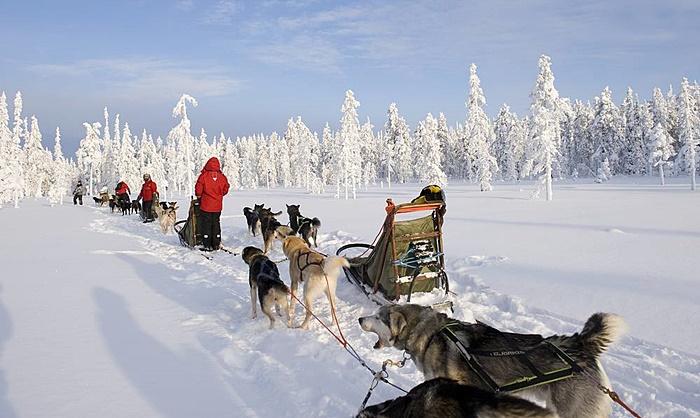 laponia papa noel viaje experiencia boreal