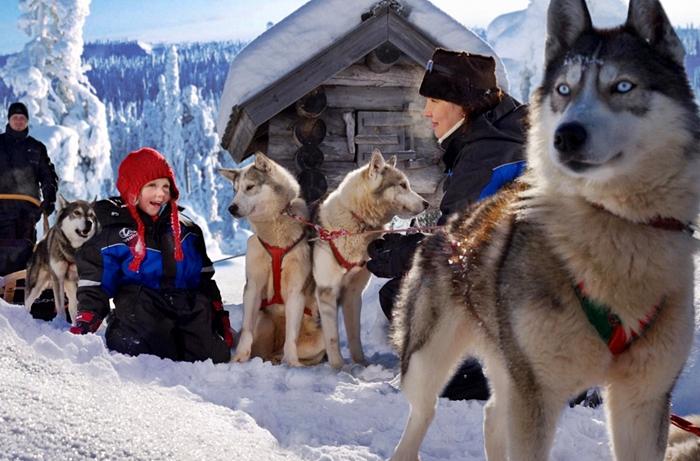 viajar a laponia arctic circle diciembre