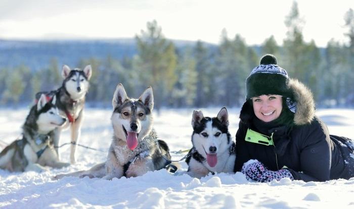 viajes laponia finlandesa artic